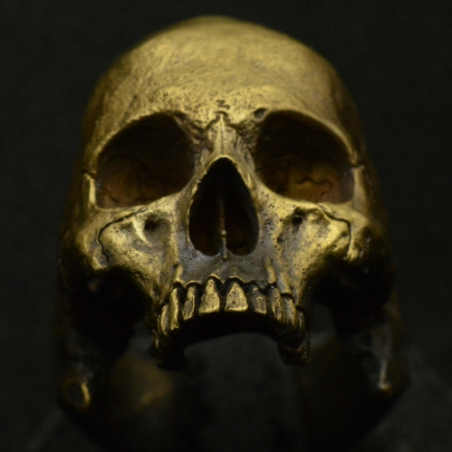 Brass Large Half Jaw • Skull Ring • Matte Finish