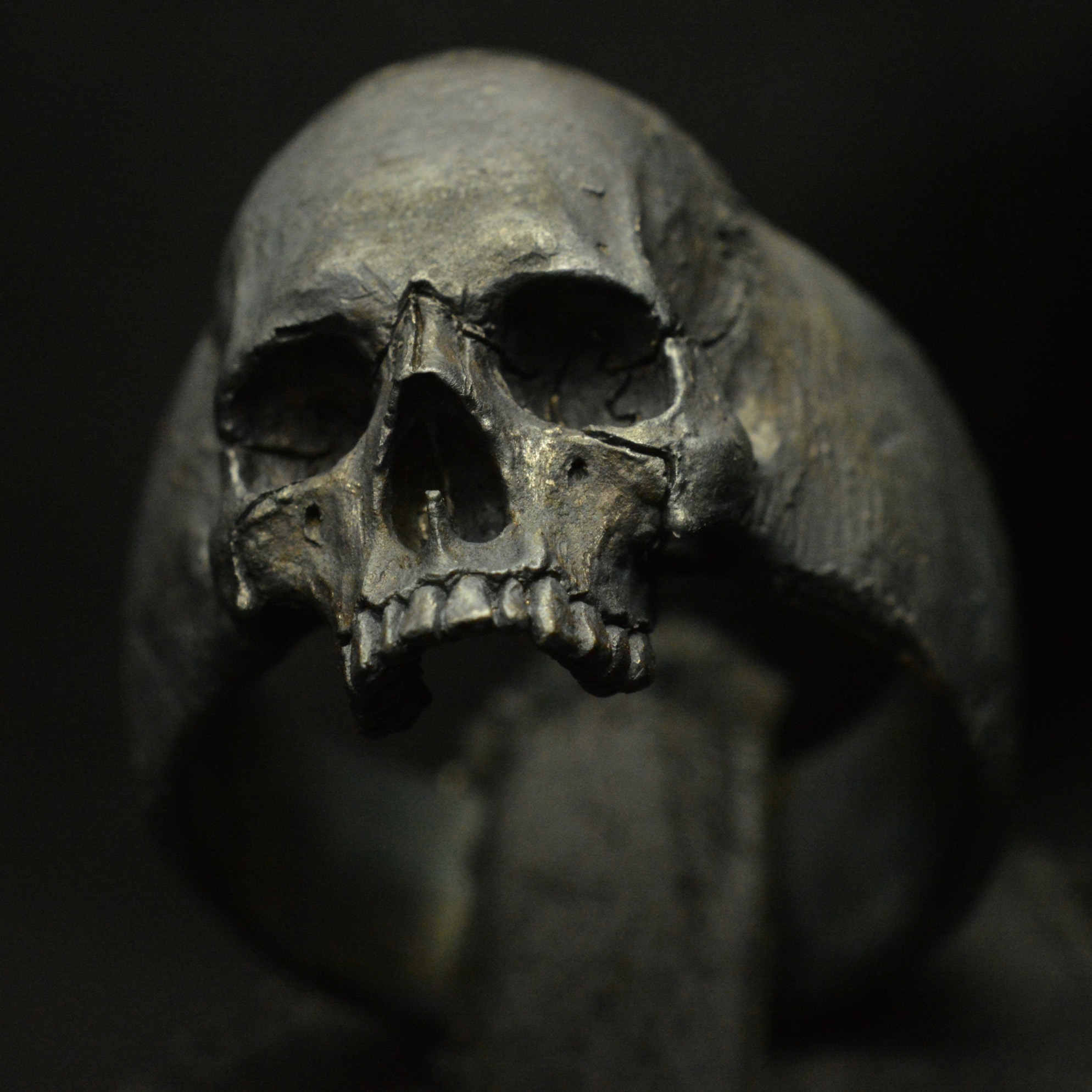 List of Synonyms and Antonyms of the Word skull rings