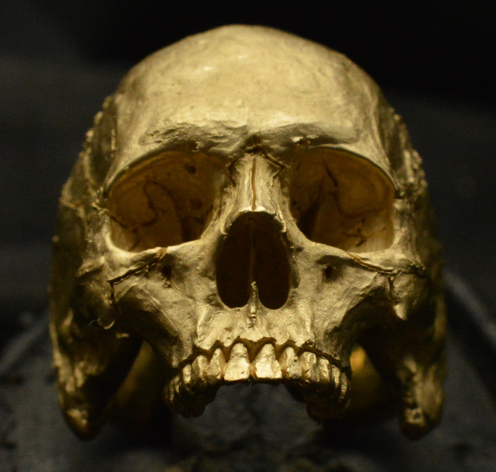 Gold Skull Head Ring