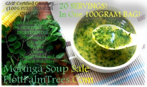 Ⓥ Genius Herbs- Moringa Soup PlottPalmTrees† ©
