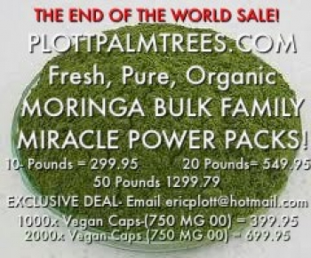 Ⓥ 1000x Organic Moringa Vegan Caps - 750mg 00 Powdered Pills Ⓥ