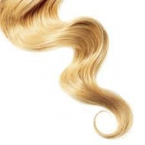 Moringa Oil: All-Natural Hair Therapy ~E.G.Plott~