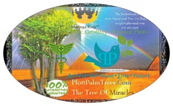 Historical Evidence: Jesus Was a Vegetarian ~E.G.Plott~ PlottPalmTrees.Com Vegan Elite